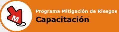 MITIGACIÓN DE RIESGOS